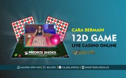 Cara Bermain 12D Game Live Casino Online Cover